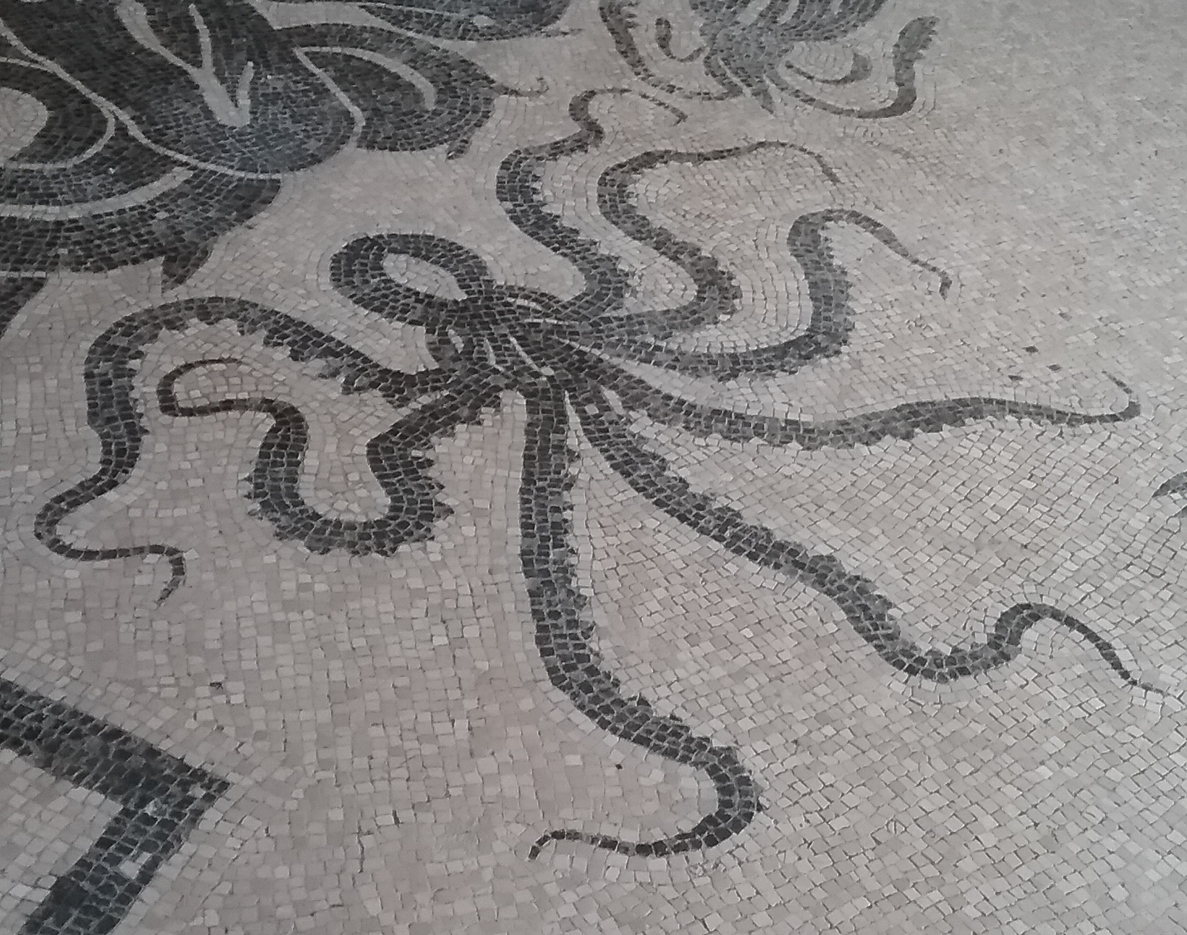 Octopus on mosaic floor