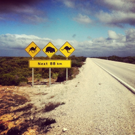 Crossing the Nullabor Plain on our Australian Road trip